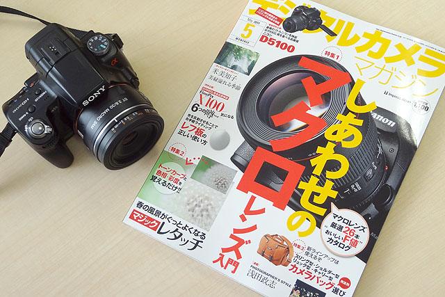 DSC03101.jpg