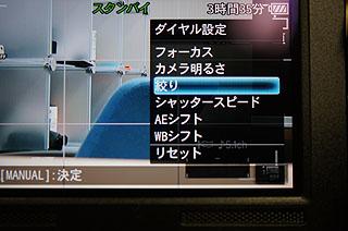 DSC09174.jpg