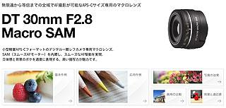 ZG2959.jpg