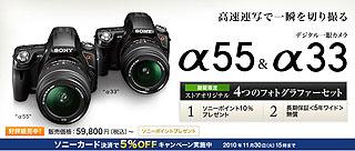 ZG2994.jpg