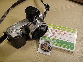 DSC02214.jpg
